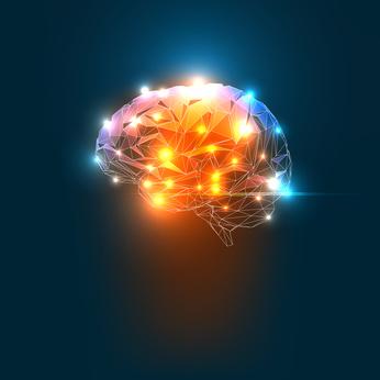 Gehirn im Ausnahmezustand