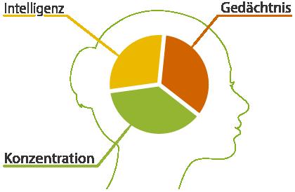 Trainieren Sie Gedächtnis, Geschwindigkeit und die Konzentration mit Gehirnjogging