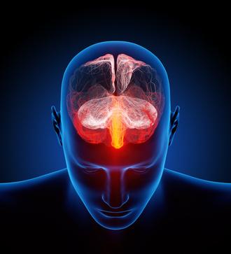 Die Ursachen von Alzheimer liegen im Gehirn