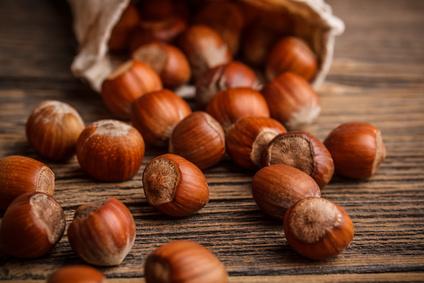 Nüsse sind Balsam für das Gehirn