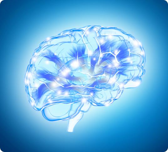 MemoWork Methode steigert Intelligenz