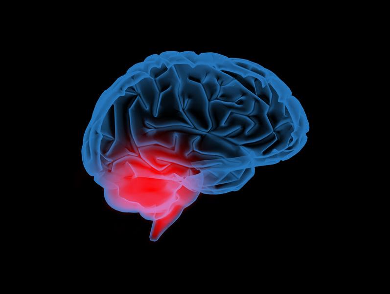 Traumatische Erlebnisse verletzen Gehirn