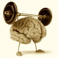 Das Gehirn stärken