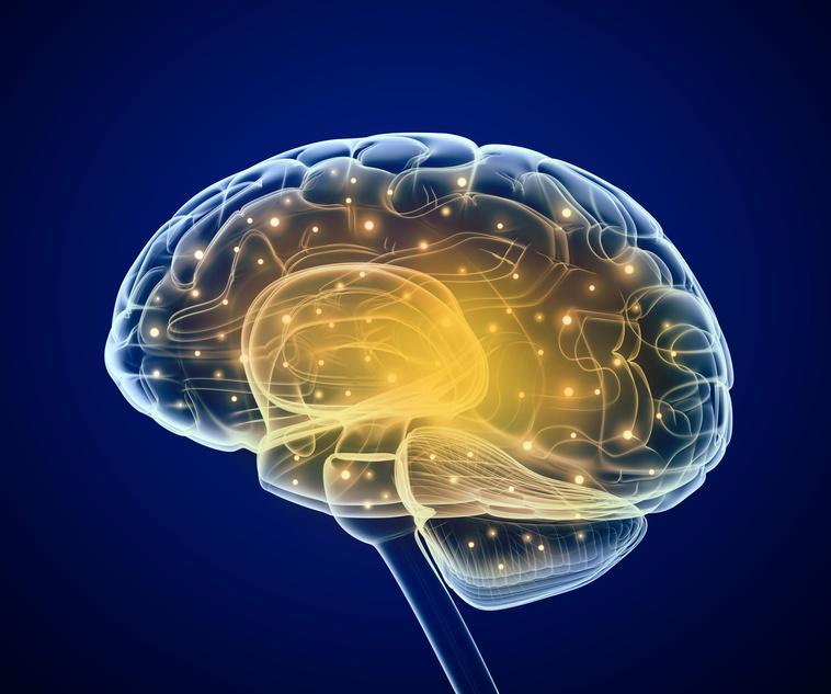 Das Gehirn profitiert von Radfahren