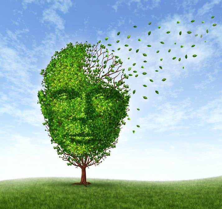 Deutliche Steigerung der kognitiven Fähigkeiten
