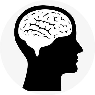 Kognitive Leistungsfähigkeit verbessern