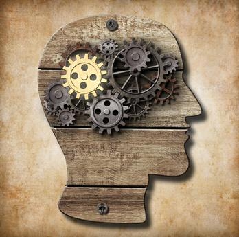 Allgemeine kognitive Fähigkeiten werden seit langem erforscht