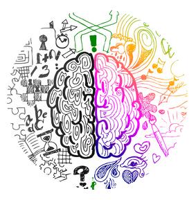 Gehirn fit machen