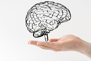 Unser Gehirn kann alles