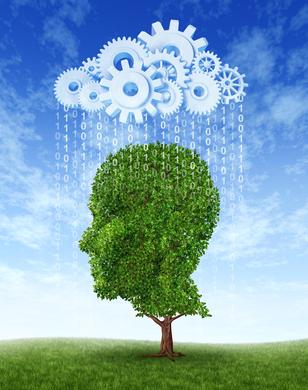 Der interaktive Gedächtnistrainer NeuroNation erhöht Ihre geistige Leistungsfähigkeit
