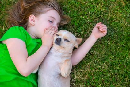 Liebe zu Haustieren