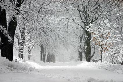 Winter kann sich auf Stimmung auswirken